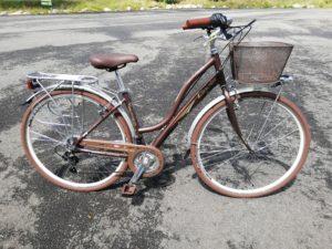 Cinzia Giara Cycles friwheel