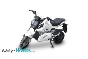 e-roadster cycles friwheel