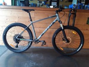 giant Talon 1 2020 cycles friwheel